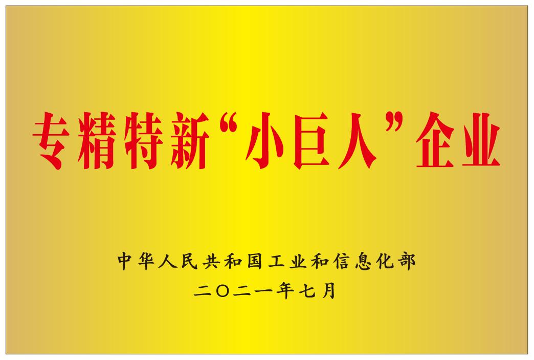 """专精特新""""小巨人""""企业"""